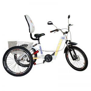 TS123-Arash-Tricycle-RAHA-im4
