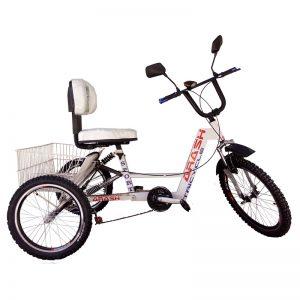 TS125-Arash-Tricycle-HARLLI-im2