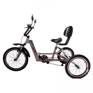 TS221-Arash-Tricycle-RAHA.s-im1
