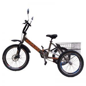 TS222-Arash-Tricycle-V.s-im2