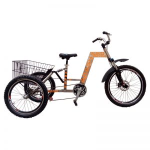 TS223-Arash-Tricycle-S.s-im1